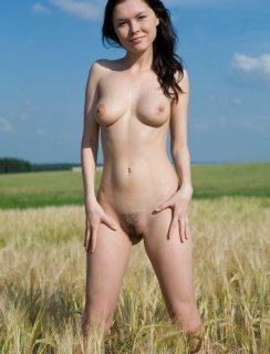 Голая красотка в пшеничном поле